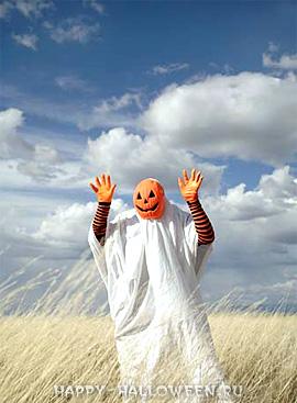 Хэллоуин на пшеничном поле