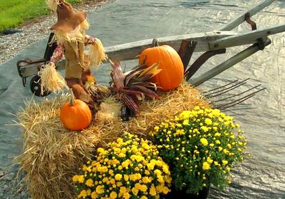 Игра - Ловля яблок на Хэллоуин